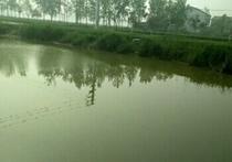张谷山河天气预报