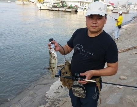 黃石長江路亞鱖魚一條
