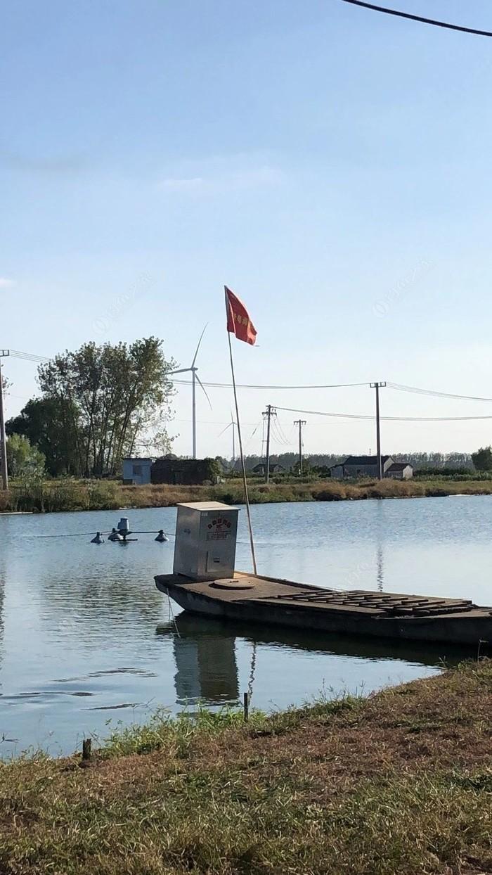 洋汊村私人鱼塘钓鱼