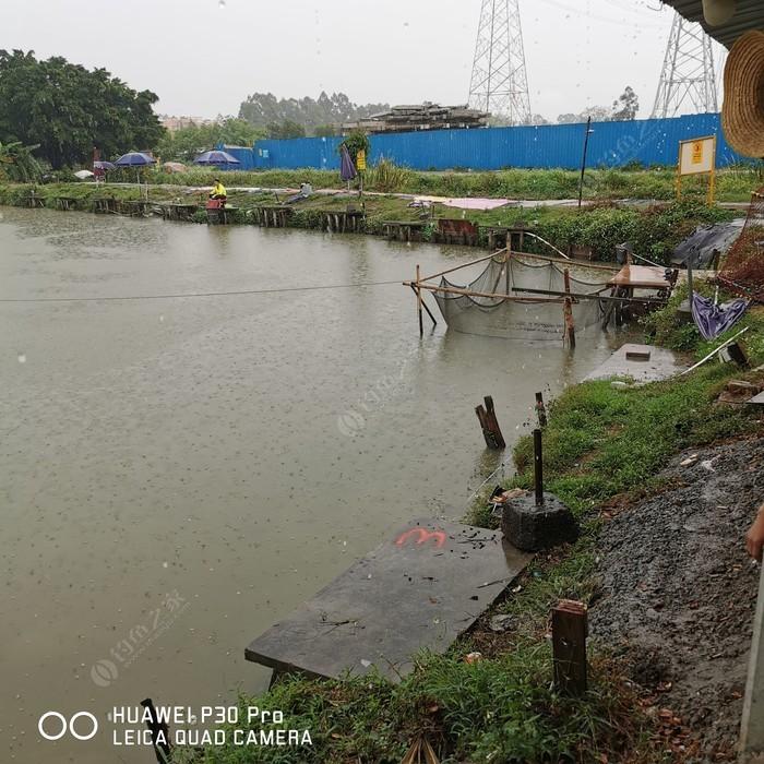 新水坑农庄钓鱼场