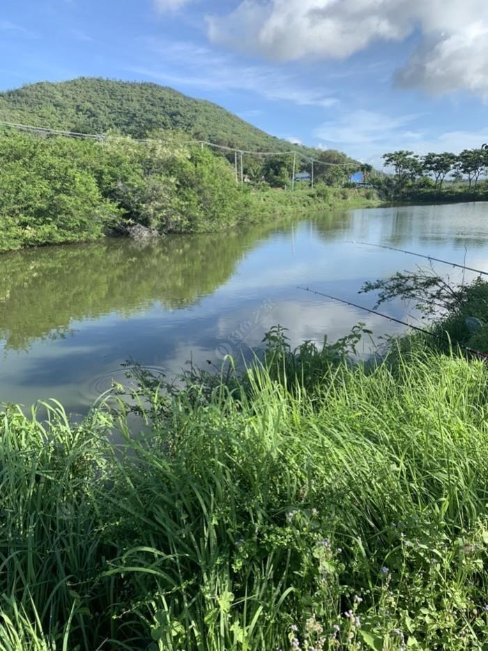 陵水三马林村鱼塘