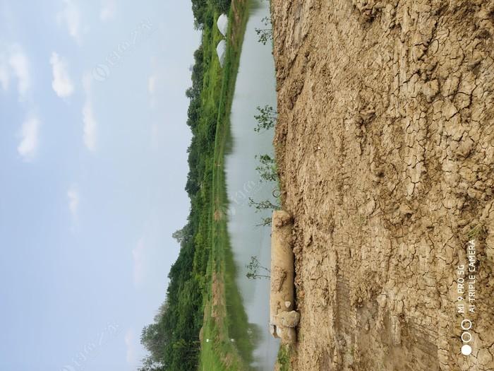 婉霞生态养殖农场