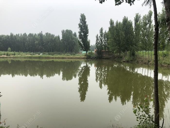 申庄农家小院垂钓园