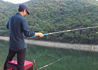 《麦子钓鱼》鲜玉米做饵显效果连竿中鱼,擒巨草,做窝有技巧