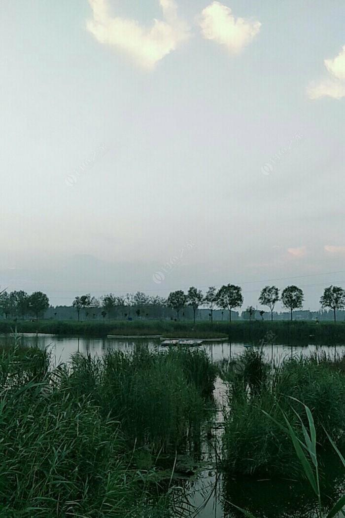 王新庄垂钓园