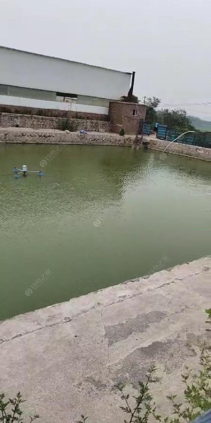 万锦园冬钓池