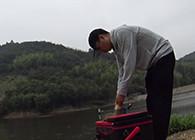 《麦子钓鱼》混养水域这样作钓,想爆护并不难