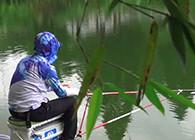 《白條游釣》 白鰷游釣浙江,老曹帶白條暴雨中釣鰱鳙,這回連桿真的爽
