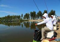 黑坑釣魚掌握這幾點,增加上魚率!