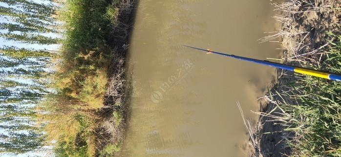 铁力木一大队鱼塘