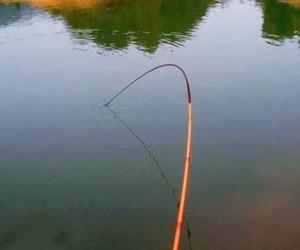冬季實用遛魚技巧,再也不怕上鉤的魚跑掉!