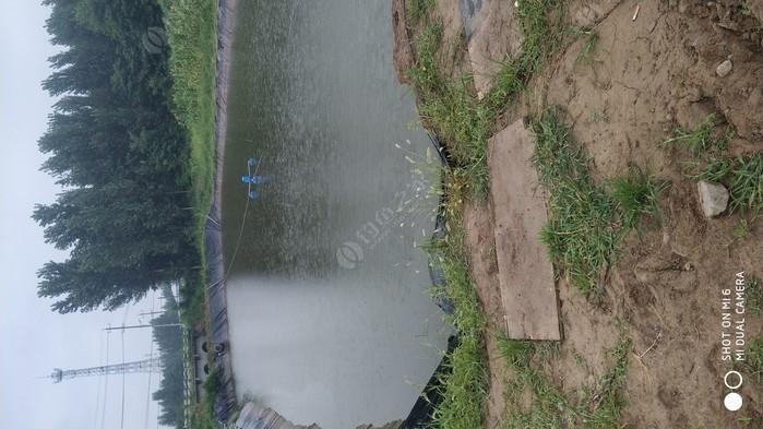 西王松釣魚場