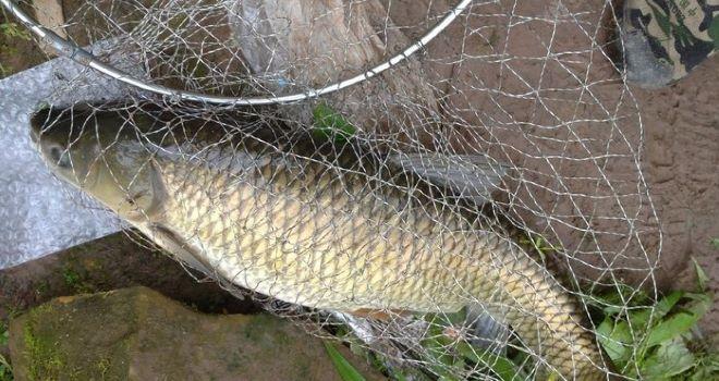 野外钓鱼重要的三点能决定鱼获多少