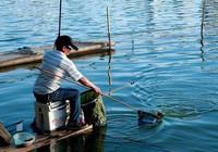 只要水層選得對 冬季釣魚爆護并不是問題!