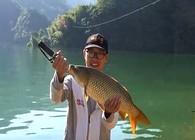 《白条游钓》游钓太平湖,玉米重窝守大鱼,历经千难终遇黄金大鲤鱼!