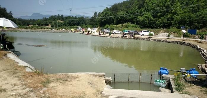 黄花闫老二水产品生态园
