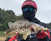 《丽娜的钓鱼日记》越下越大的雨,第一时间影响鱼竿的灵敏度!