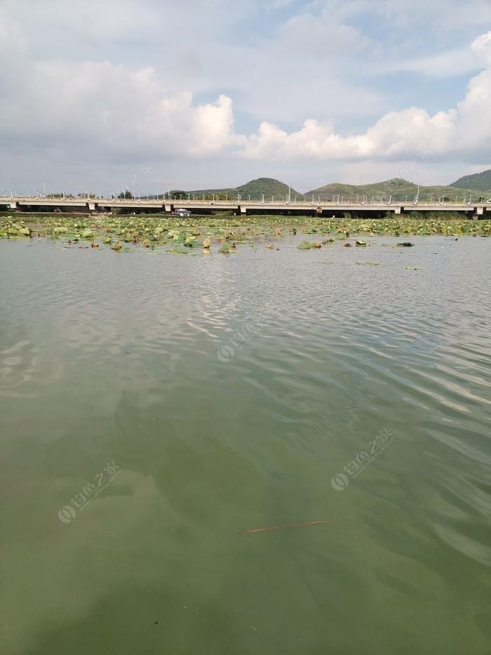 小渔村废旧鱼塘