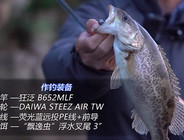 《EWE路亚》【飘逸虫】搭配铅头钩钓组鳜鱼实战