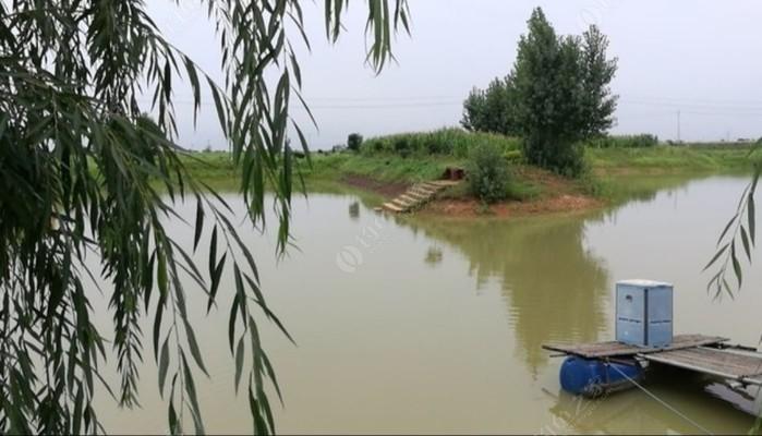 姜庄餐饮垂钓中心