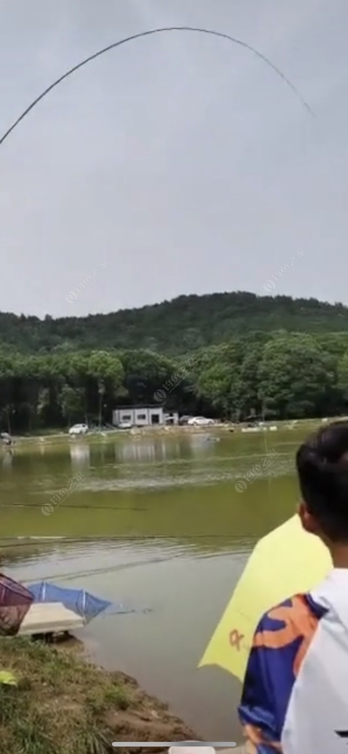 殷山湾水库钓场