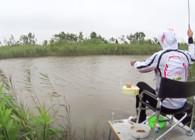 《麥子釣魚》釣魚實戰 野河作釣未打窩先中魚