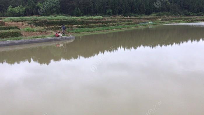 杨广石塘钓场