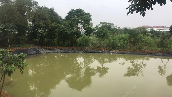 三龙水电站农园休闲钓鱼场