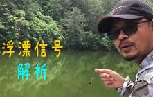 《户外老曹》钓鱼人要知道:除了中鱼,浮漂还能告诉我们很多信息!