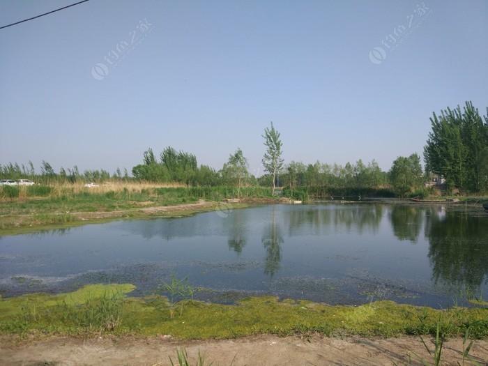 龙龙农家院垂钓园