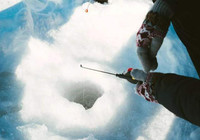 冬季冰釣教你如何找魚!