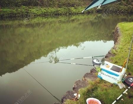 陰雨蒙蒙,黃塘水庫掃奶鯪記