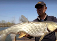 《游釣中國》第四季 第50集 春回大地探釣巢湖之濱