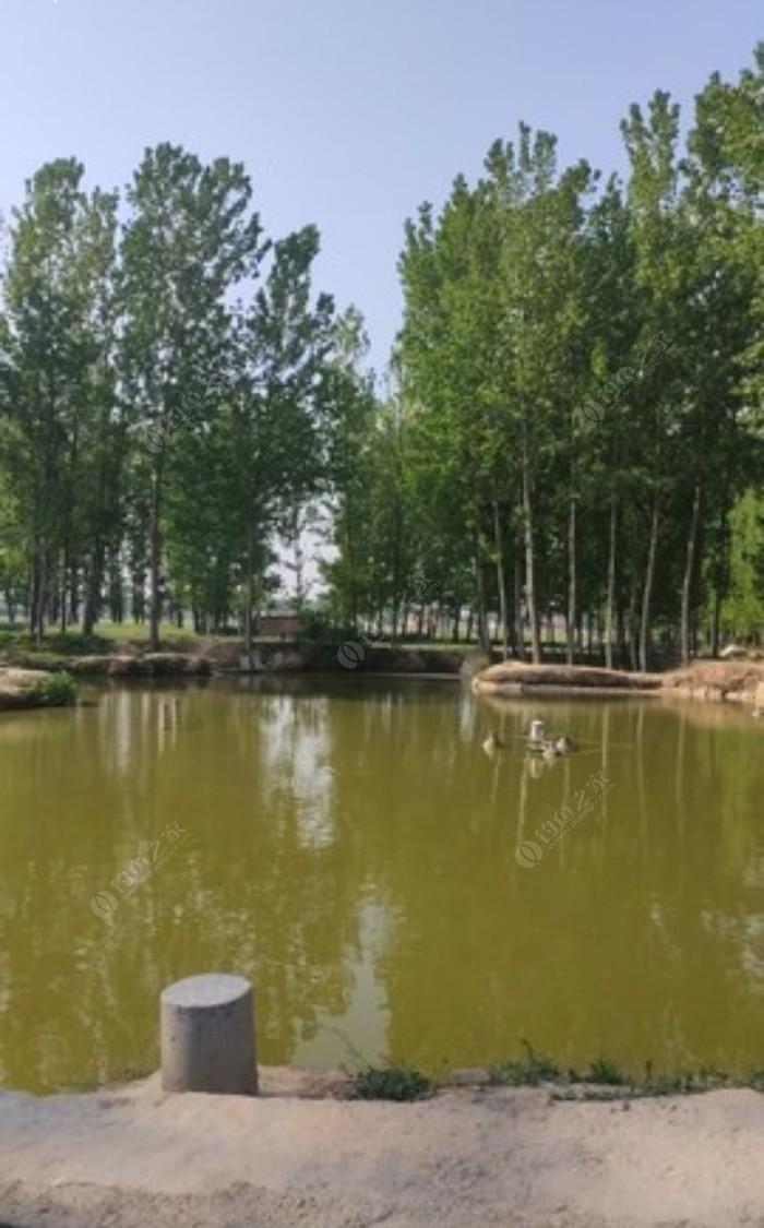 野场渔场钓鱼