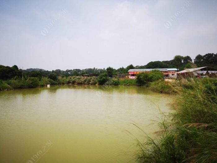 泉水鸭农庄