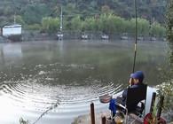 《麦子钓鱼》怎样根据鱼种和钓法来选择浮漂,让你钓鱼得心应手