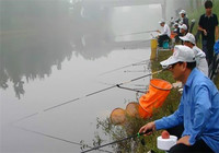 作钓肥水塘时必备的一些技巧!