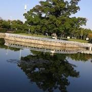 【学钓技 】       春天,钓鲤鱼个人感悟