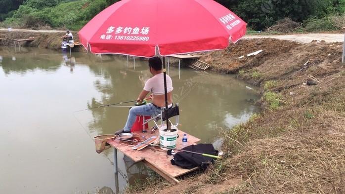 多多钓鱼场