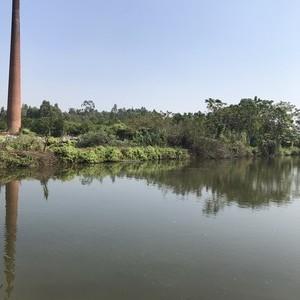 渔乐园生态钓鱼场