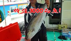 《全球钓鱼集锦》外海钓鱼,用每条价值100的鱼换价值3000的鱼!