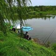 [技巧浅谈亅三伏桑拿天气温高气压低怎样才能钓上更多的鱼来?