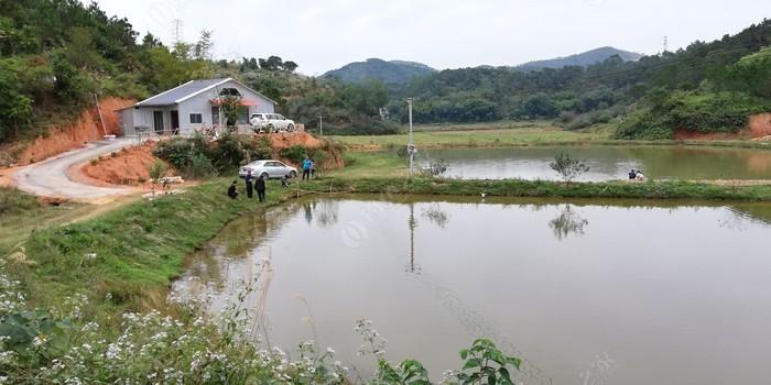 文山庄钓鱼场