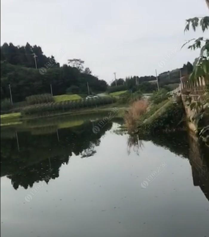 简阳金马70水库