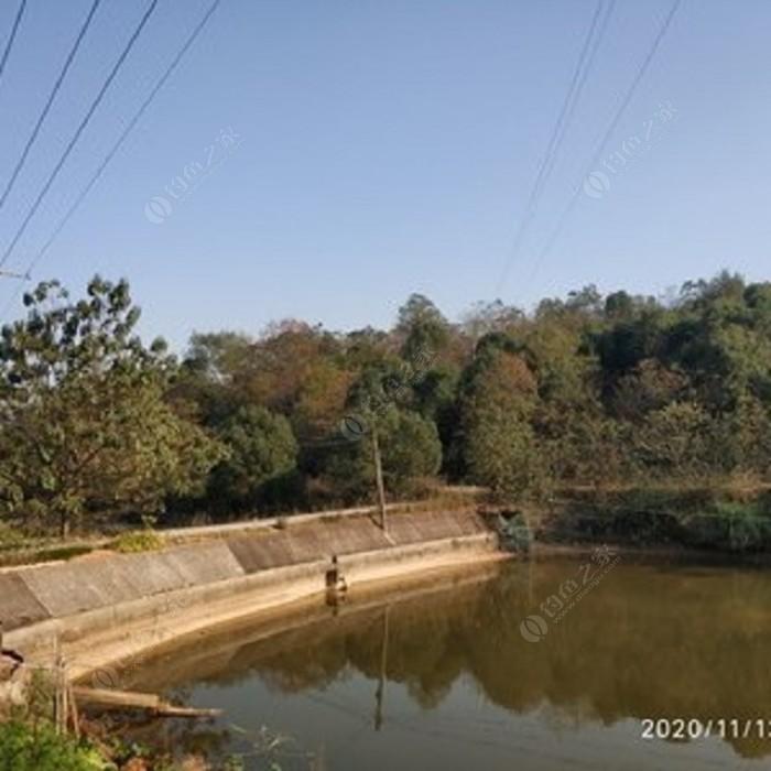 清水环保鱼塘