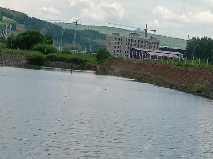金口坝鱼池