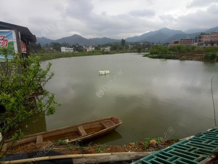 盘龙钓鱼场