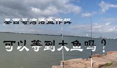 《全球钓鱼集锦》八千多米的长堤上,活鱼做饵可以钓到大鱼吗?