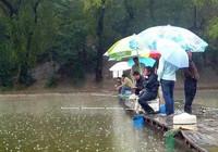 下雨天作釣,釣深釣淺有講究!