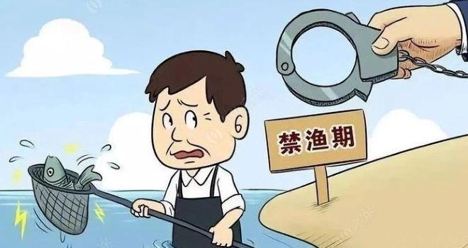 """长江流域禁渔为何期限是十年,十年足够生态系统""""脱胎换骨""""吗?"""